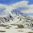 © Elizabeth Burin, Mt. Rainier, Melting Snow II