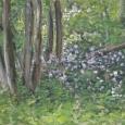 © Elizabeth Burin, Woods in Spring