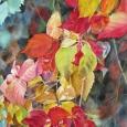 © Elizabeth Burin, Fall Cascade II