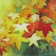 © Elizabeth Burin, Autumn Stars