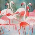 © Elizabeth Burin, Flamingo Fancy
